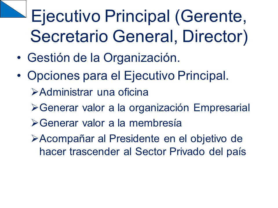 Ejecutivo Principal (Gerente, Secretario General, Director)