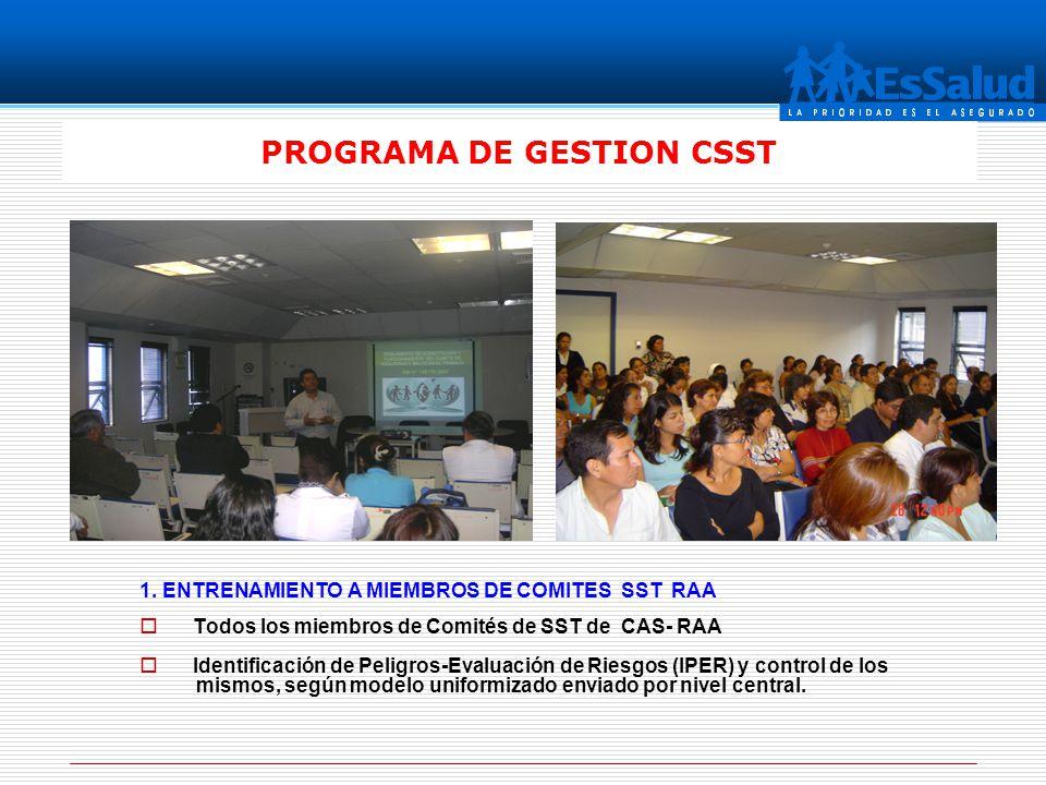 PROGRAMA DE GESTION CSST