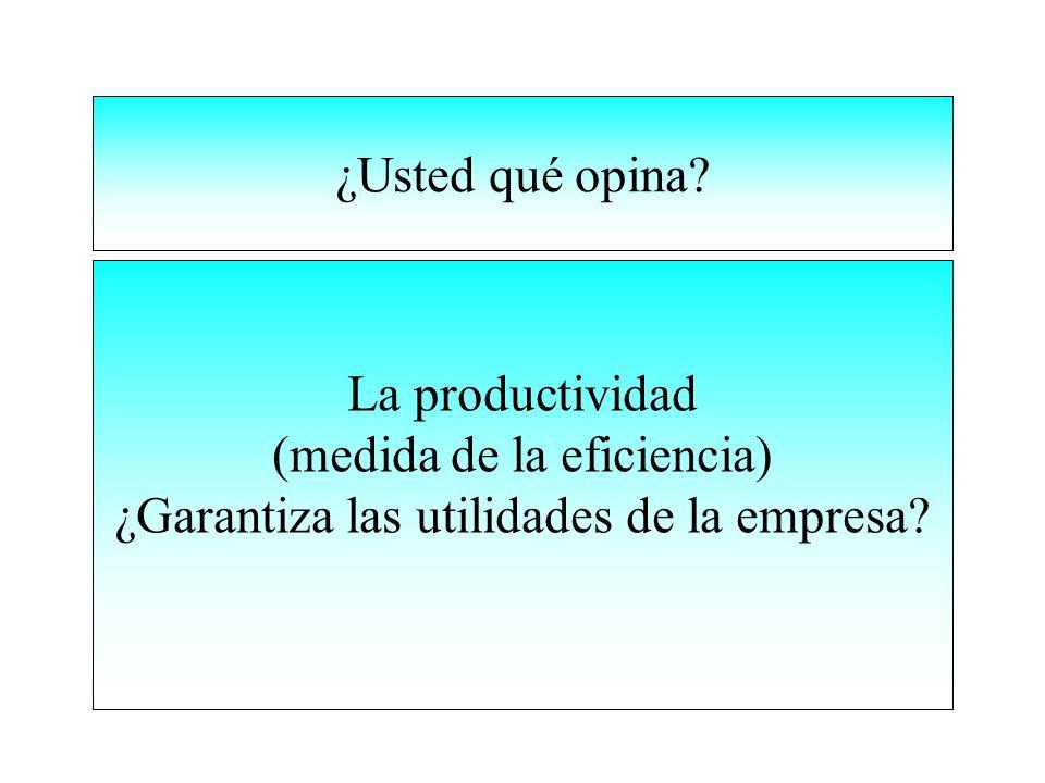 (medida de la eficiencia) ¿Garantiza las utilidades de la empresa