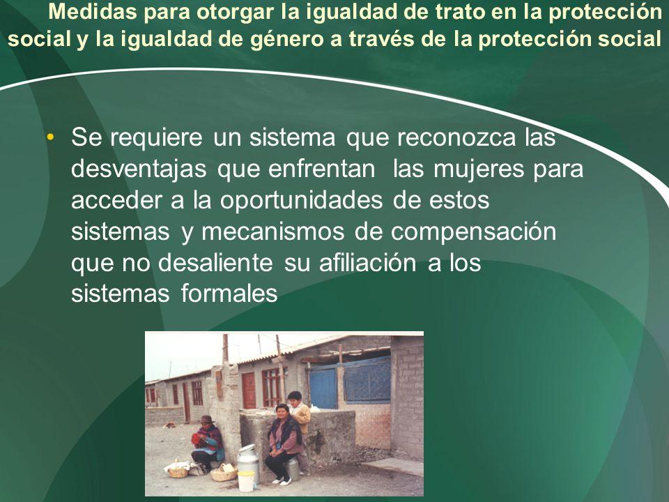 Medidas para otorgar la igualdad de trato en la protección social y la igualdad de género a través de la protección social