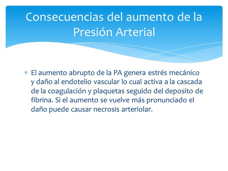Consecuencias del aumento de la Presión Arterial