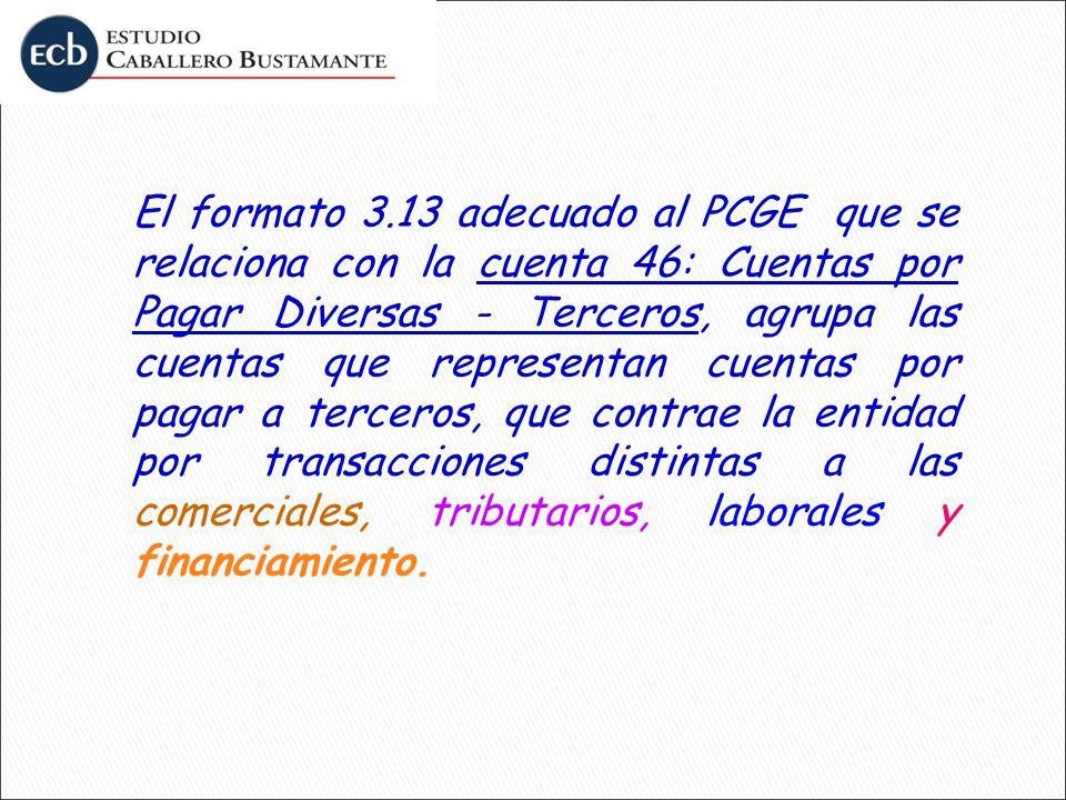 El formato 3.13 adecuado al PCGE que se relaciona con la cuenta 46: Cuentas por Pagar Diversas - Terceros, agrupa las cuentas que representan cuentas por pagar a terceros, que contrae la entidad por transacciones distintas a las comerciales, tributarios, laborales y financiamiento.