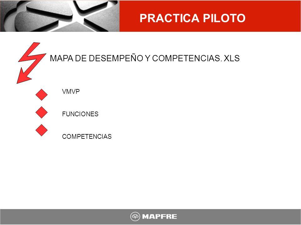 PRACTICA PILOTO MAPA DE DESEMPEÑO Y COMPETENCIAS. XLS VMVP FUNCIONES