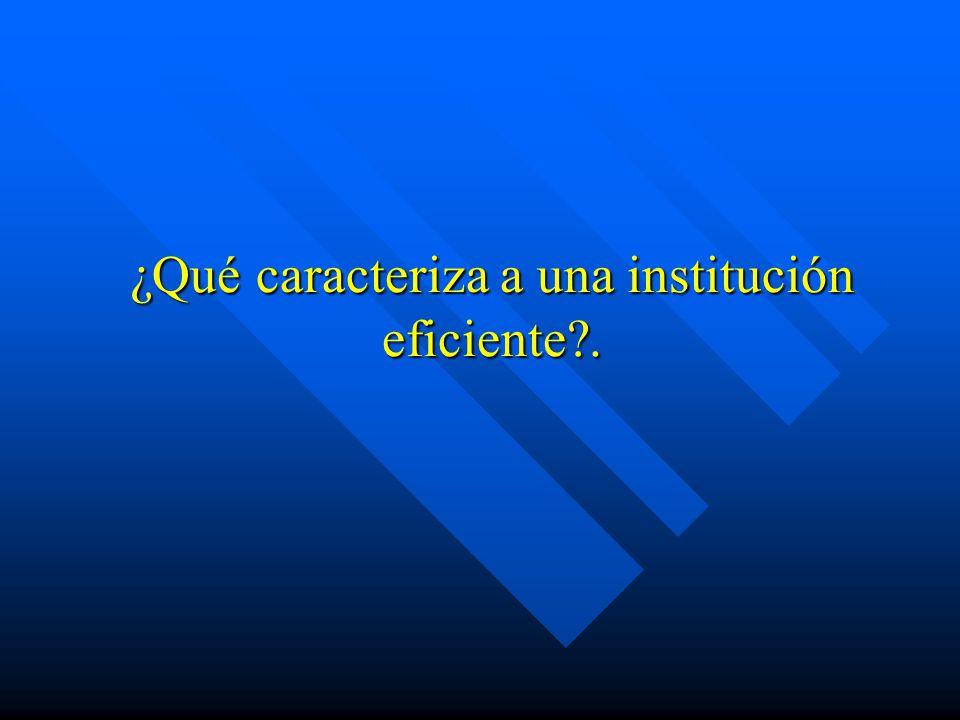 ¿Qué caracteriza a una institución eficiente .