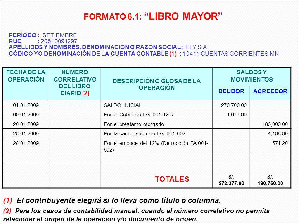 FORMATO 6.1: LIBRO MAYOR