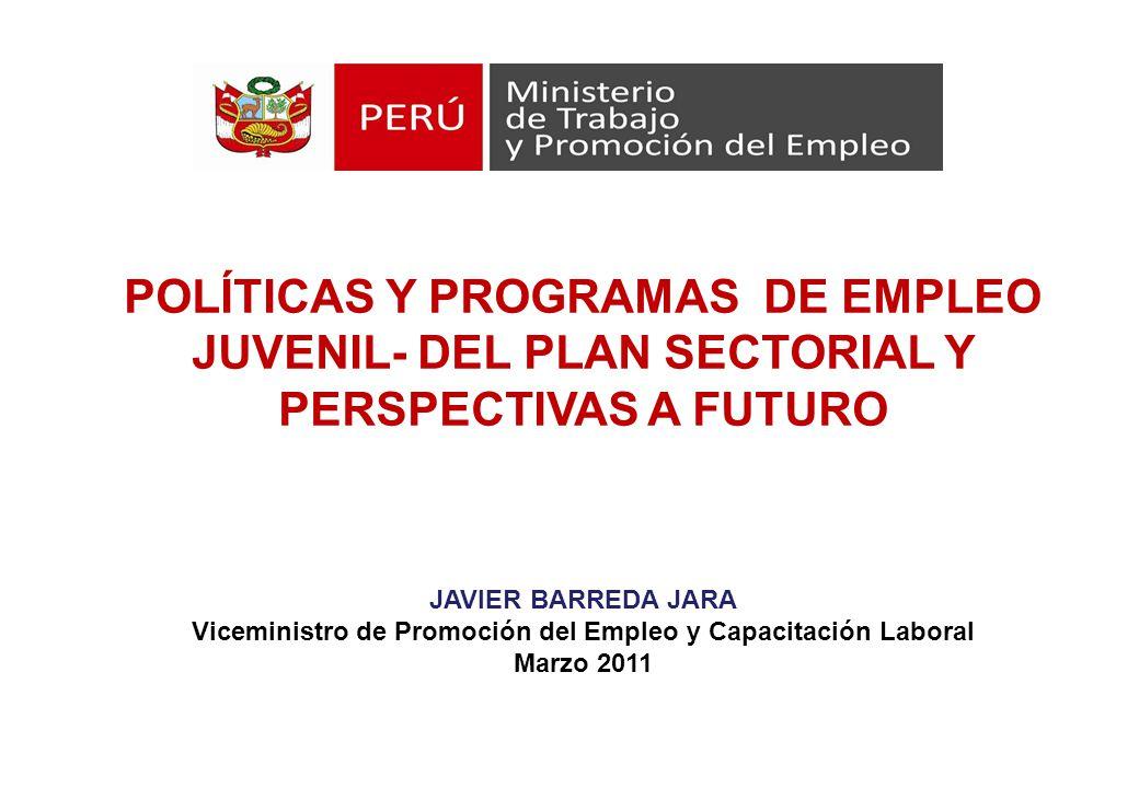 Viceministro de Promoción del Empleo y Capacitación Laboral