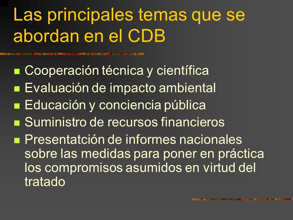 Las principales temas que se abordan en el CDB