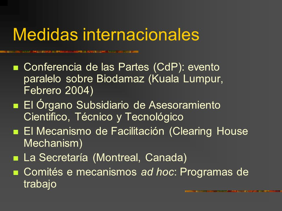 Medidas internacionales