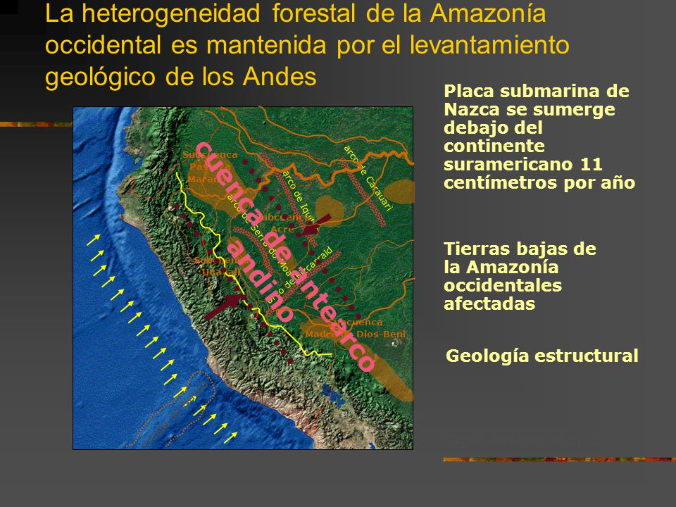 cuenca de antearco andino