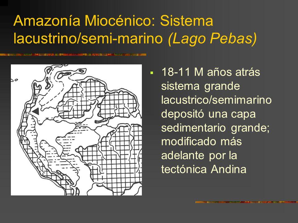 Amazonía Miocénico: Sistema lacustrino/semi-marino (Lago Pebas)