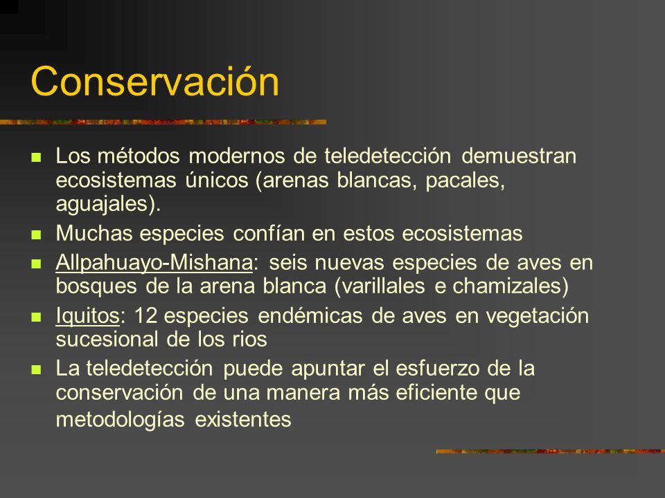 Conservación Los métodos modernos de teledetección demuestran ecosistemas únicos (arenas blancas, pacales, aguajales).