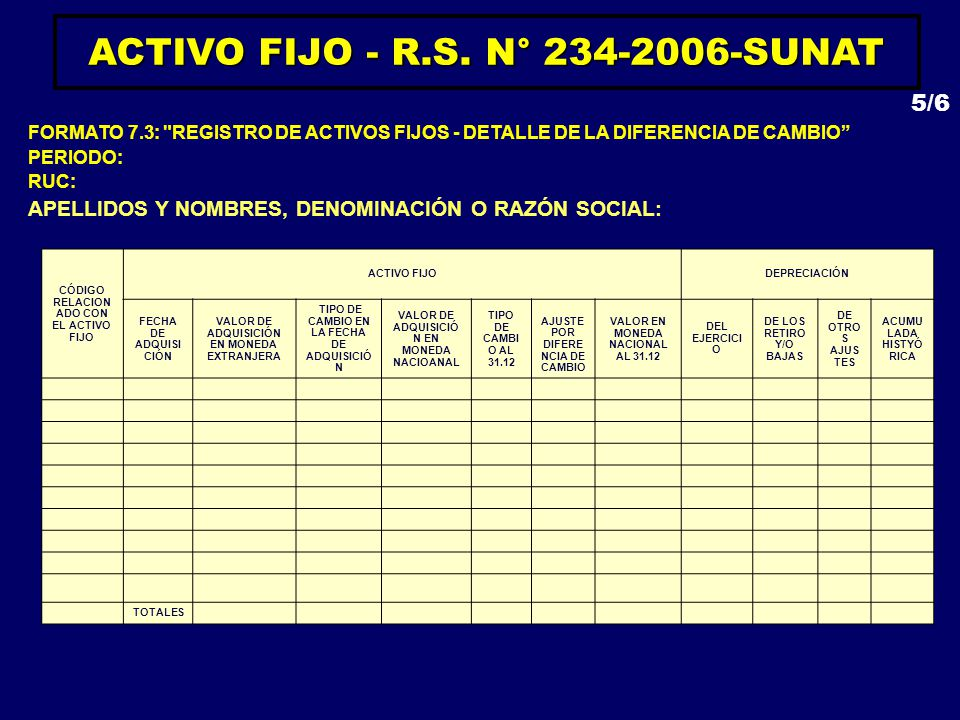 ACTIVO FIJO - R.S. N° 234-2006-SUNAT