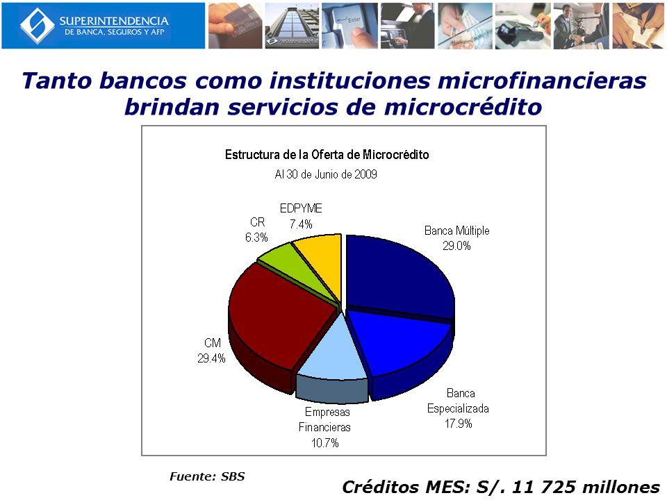 Tanto bancos como instituciones microfinancieras brindan servicios de microcrédito