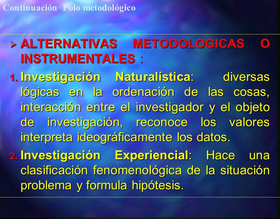 ALTERNATIVAS METODOLOGICAS O INSTRUMENTALES :