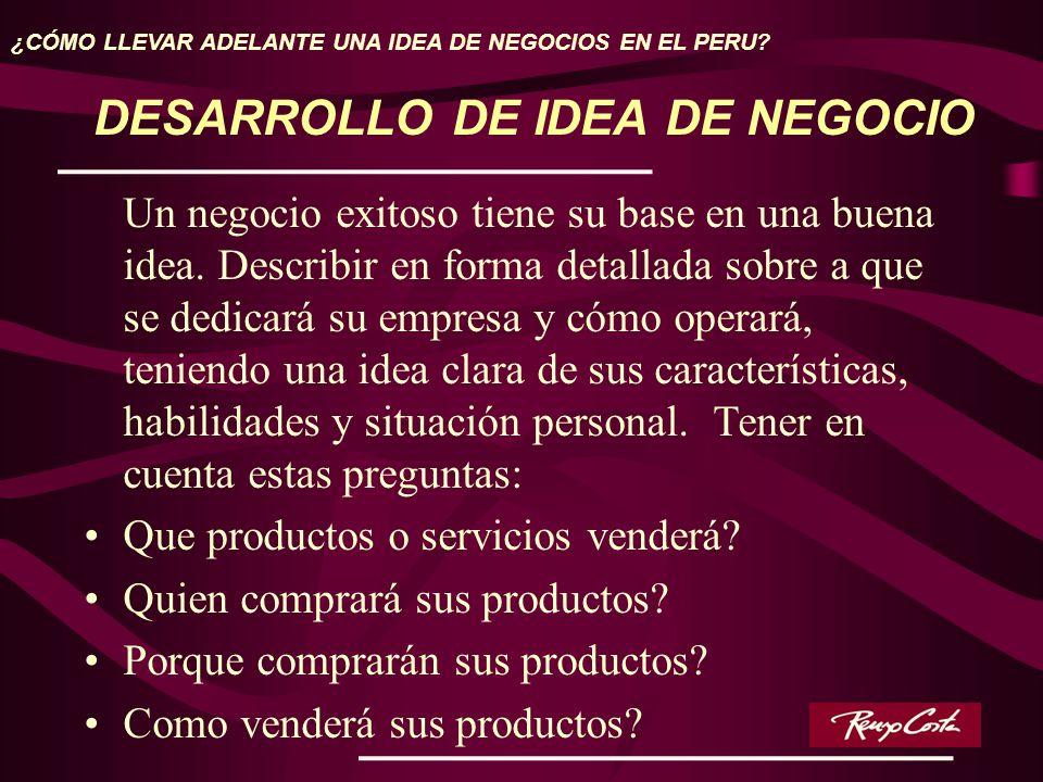 DESARROLLO DE IDEA DE NEGOCIO