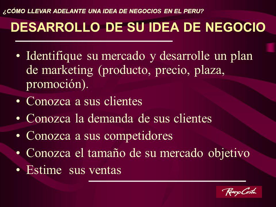 DESARROLLO DE SU IDEA DE NEGOCIO