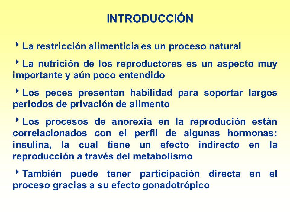 INTRODUCCIÓN La restricción alimenticia es un proceso natural