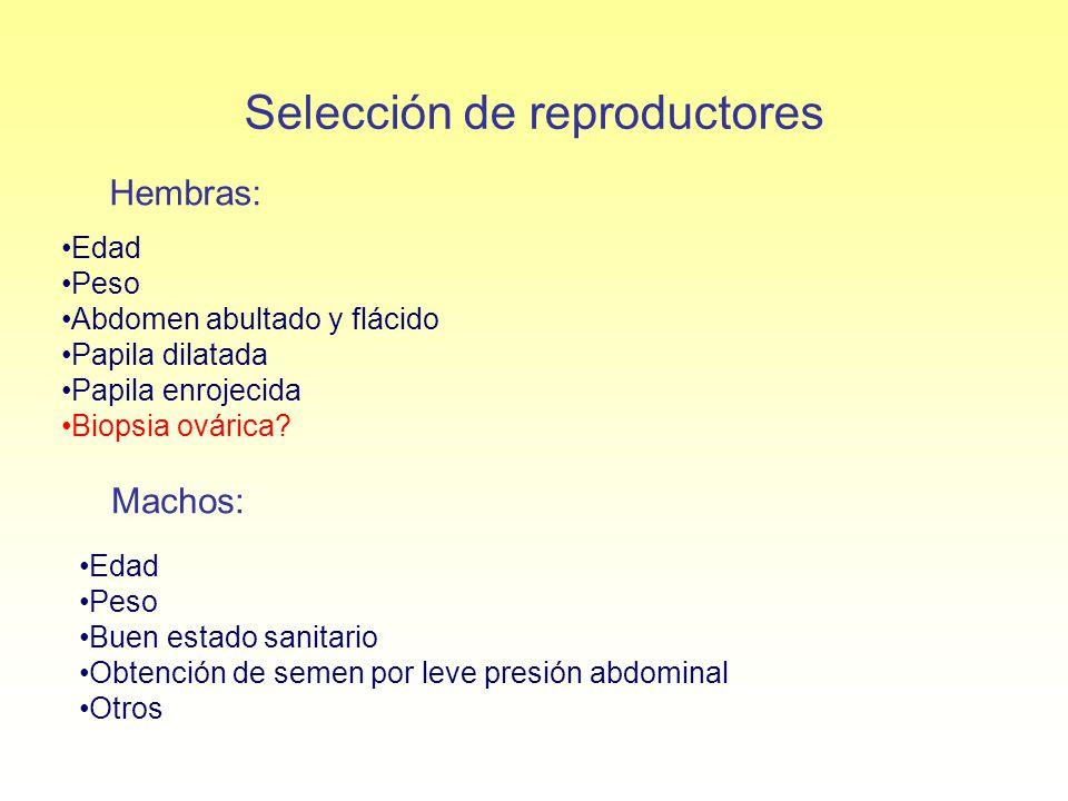 Selección de reproductores