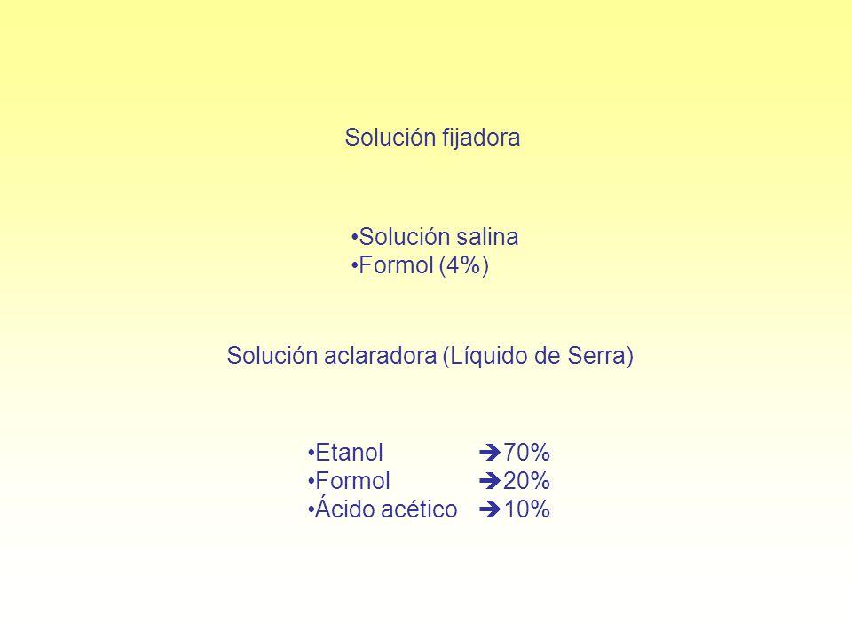 Solución aclaradora (Líquido de Serra)