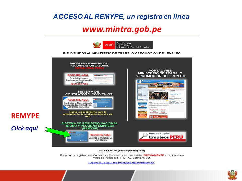 ACCESO AL REMYPE, un registro en linea