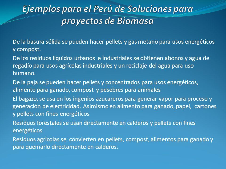 Ejemplos para el Perú de Soluciones para proyectos de Biomasa