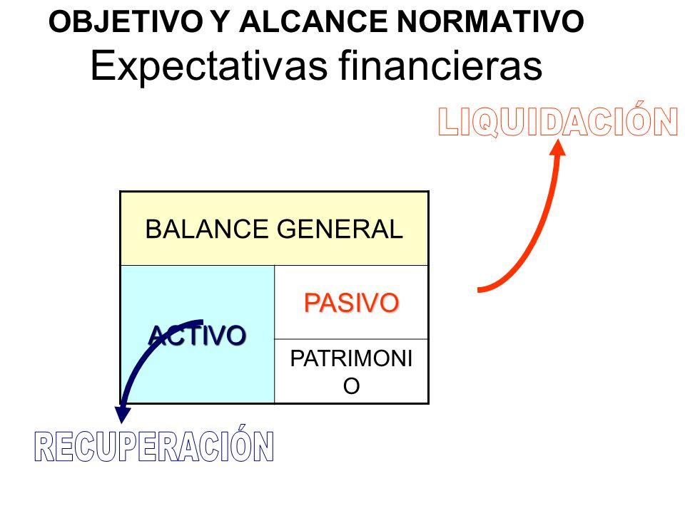 OBJETIVO Y ALCANCE NORMATIVO Expectativas financieras