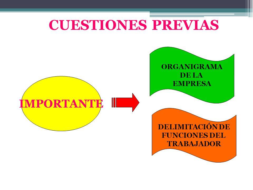 CUESTIONES PREVIAS IMPORTANTE ORGANIGRAMA DE LA EMPRESA