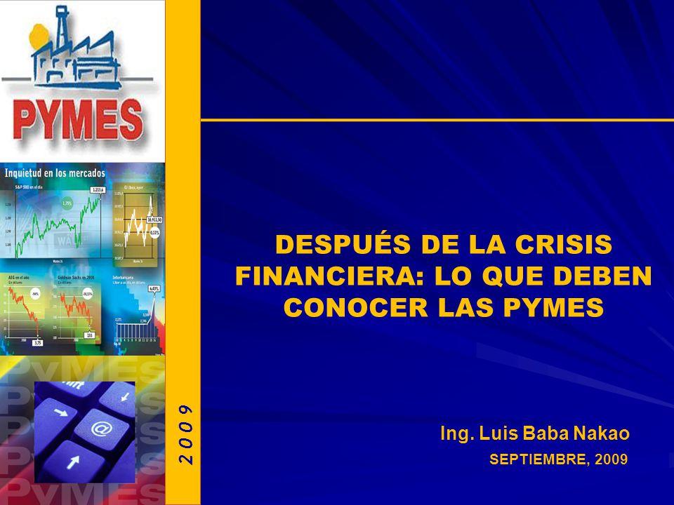 DESPUÉS DE LA CRISIS FINANCIERA: LO QUE DEBEN CONOCER LAS PYMES