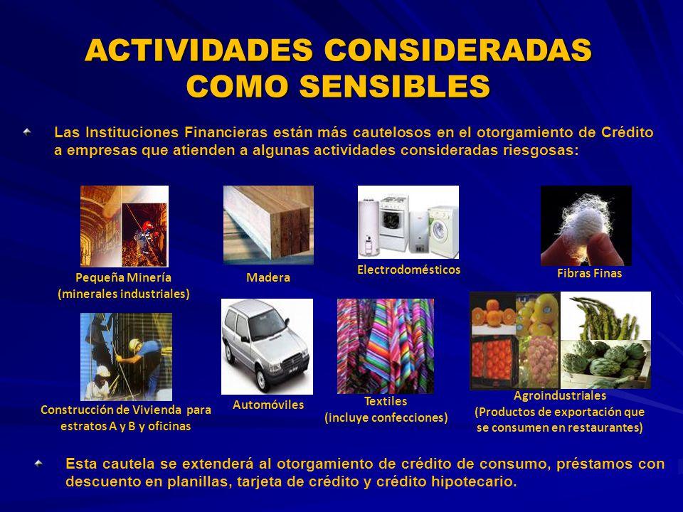ACTIVIDADES CONSIDERADAS COMO SENSIBLES