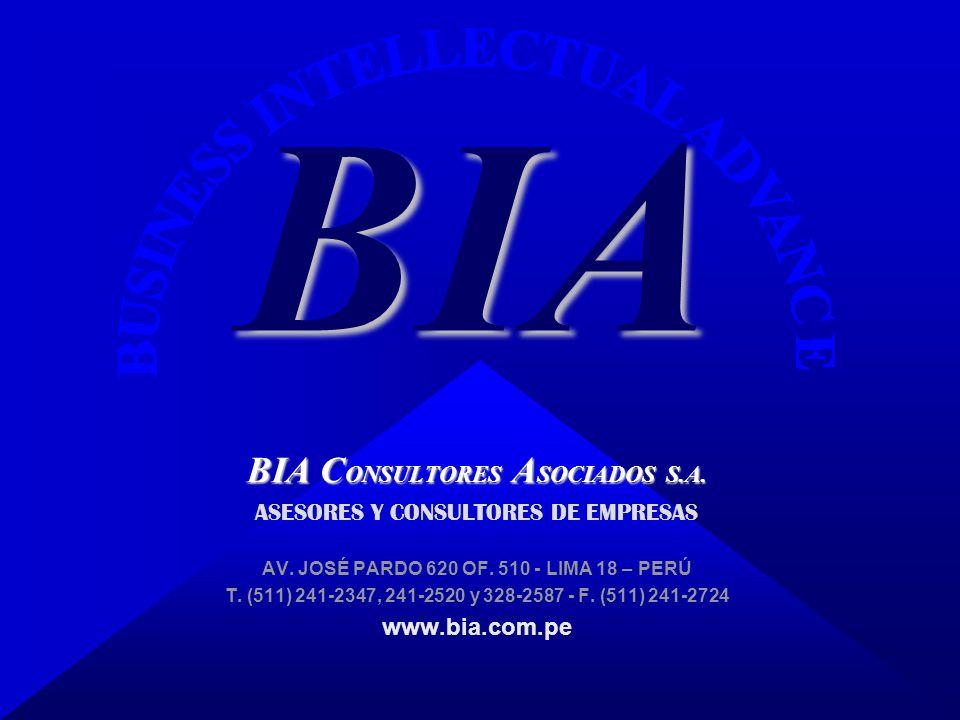 BIA BIA CONSULTORES ASOCIADOS S.A. ASESORES Y CONSULTORES DE EMPRESAS