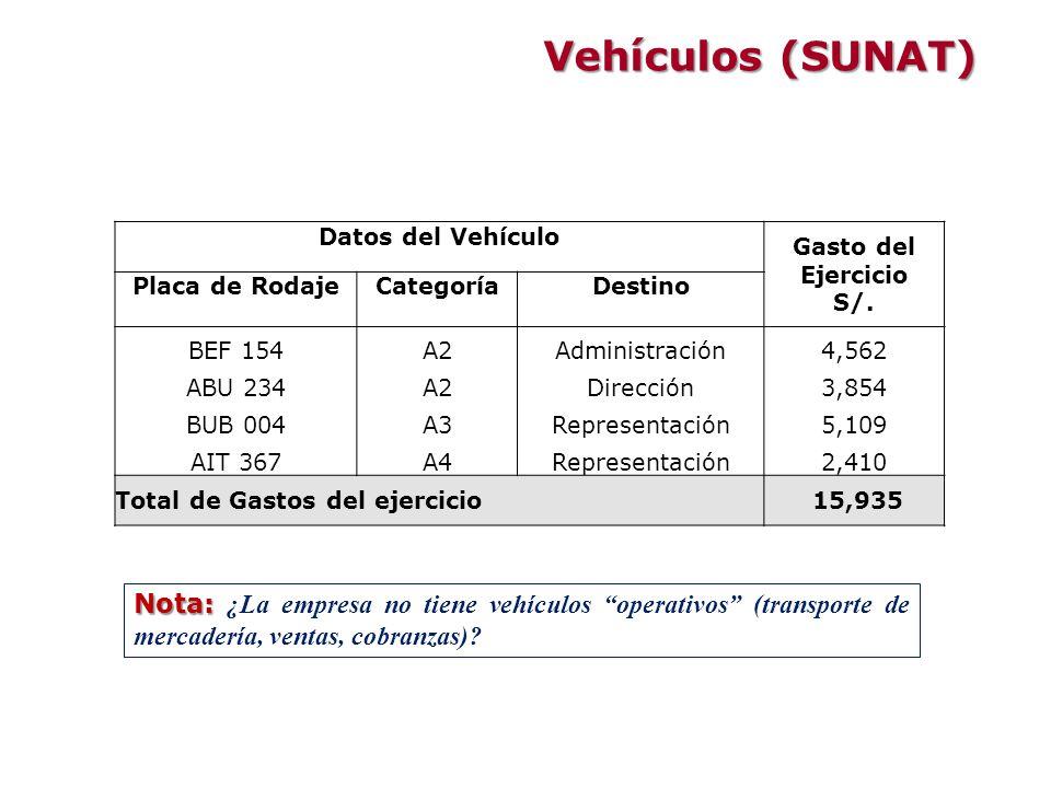 Vehículos (SUNAT) Datos del Vehículo. Gasto del Ejercicio. S/. Placa de Rodaje. Categoría. Destino.
