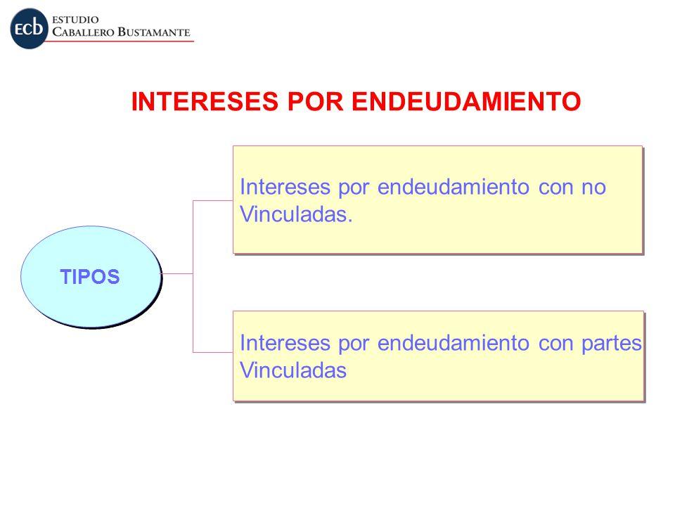 INTERESES POR ENDEUDAMIENTO