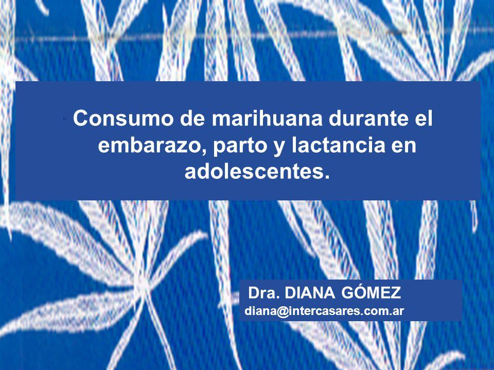 Dra. DIANA GÓMEZ diana@intercasares.com.ar
