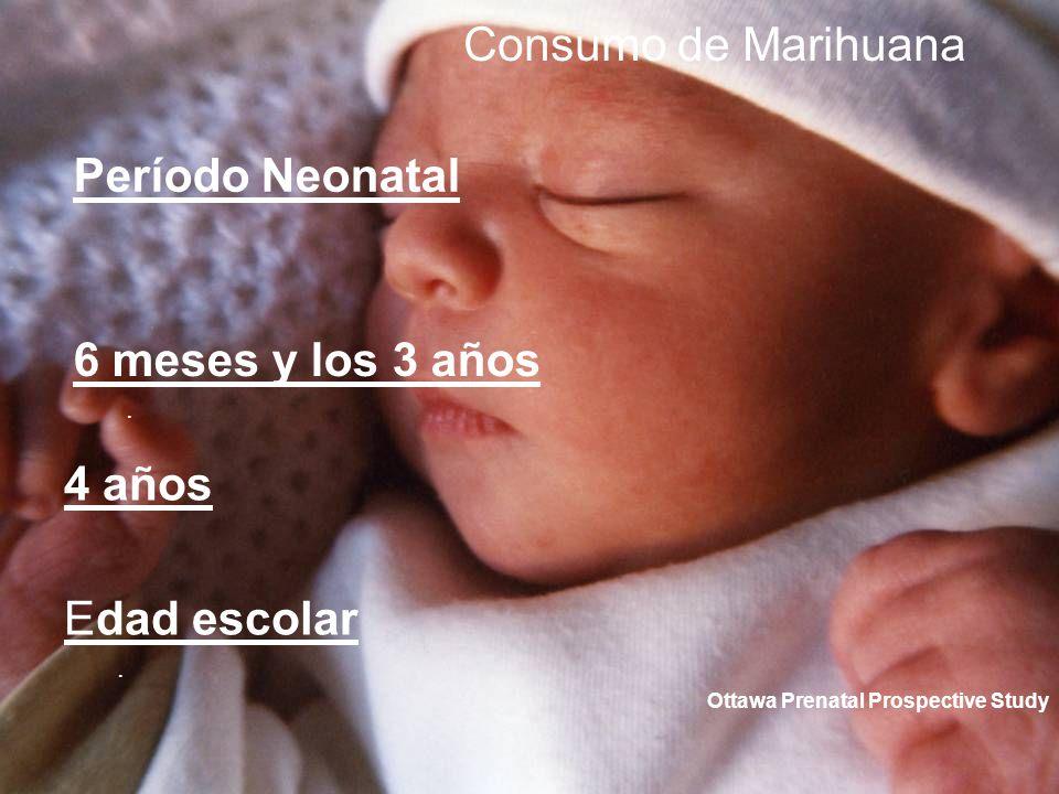 Consumo de Marihuana Período Neonatal 6 meses y los 3 años 4 años