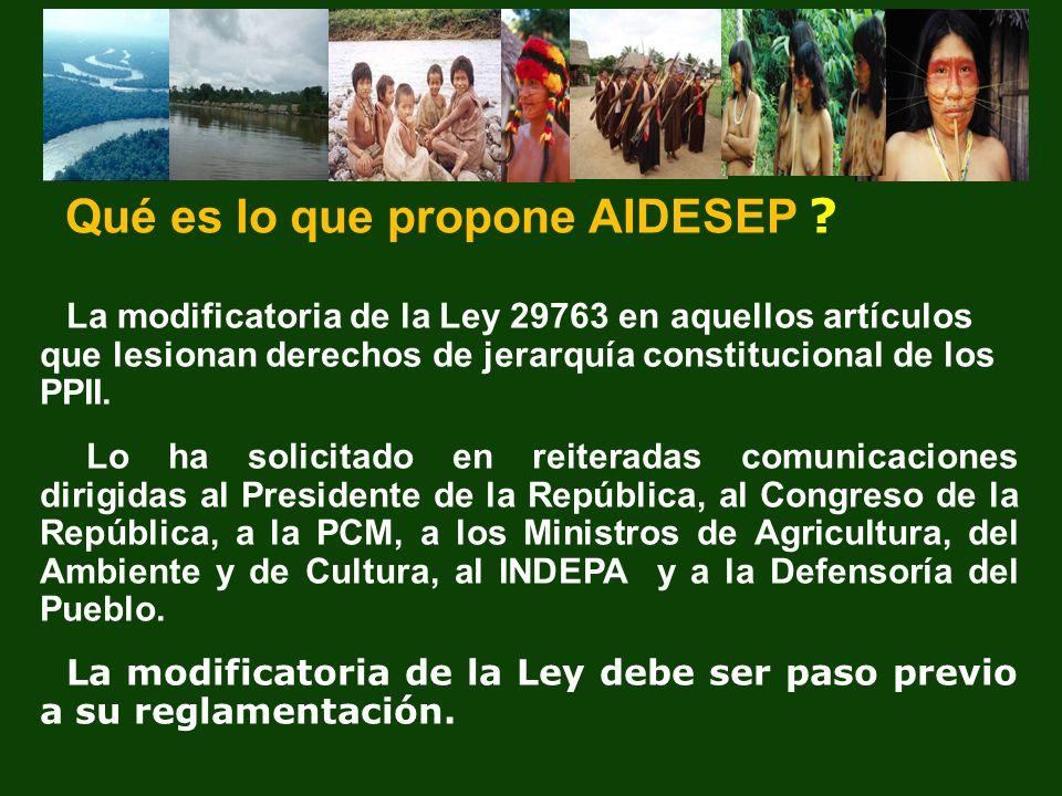 Qué es lo que propone AIDESEP