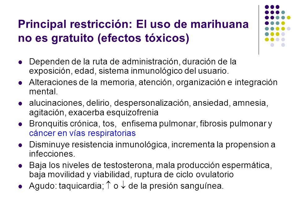 Principal restricción: El uso de marihuana no es gratuito (efectos tóxicos)