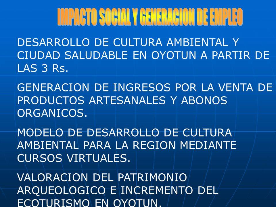 IMPACTO SOCIAL Y GENERACION DE EMPLEO