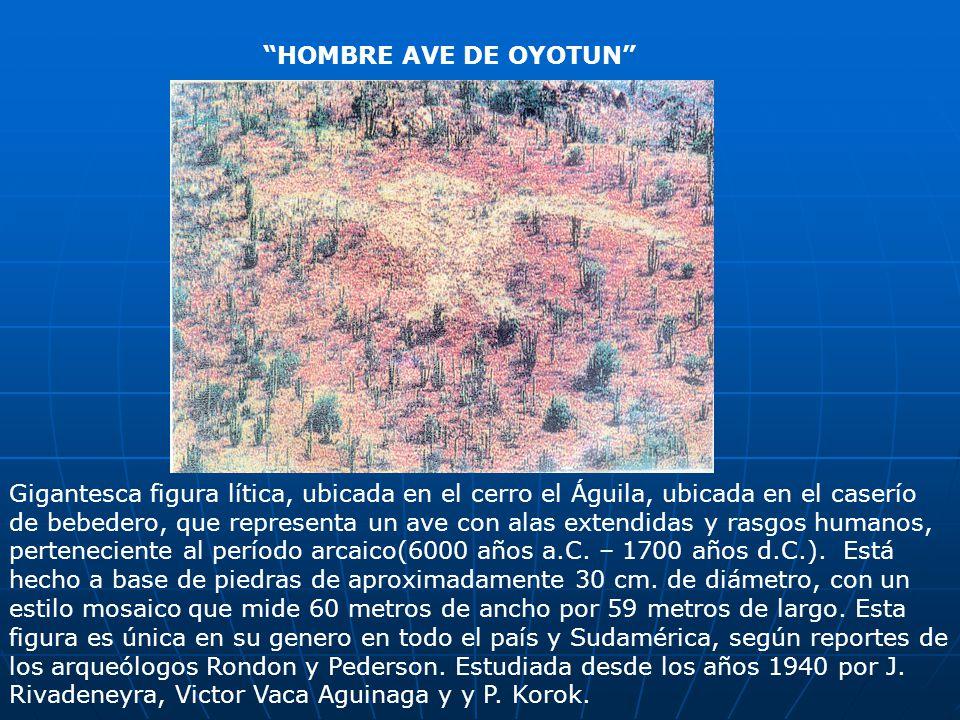 HOMBRE AVE DE OYOTUN