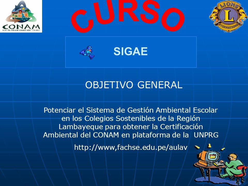 CURSO SIGAE OBJETIVO GENERAL