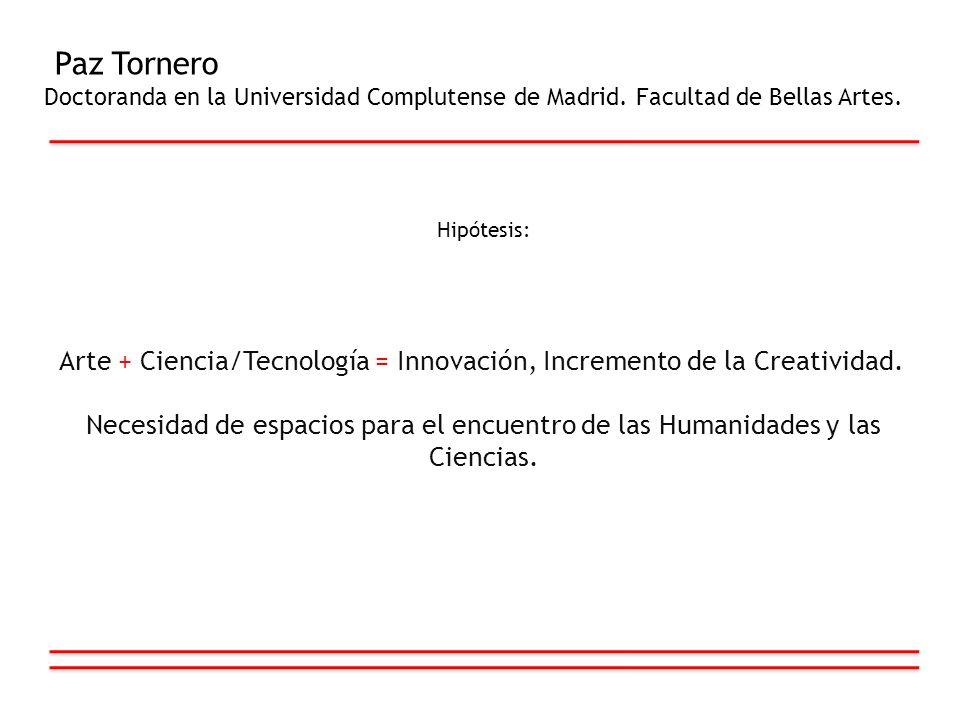 Paz Tornero Doctoranda en la Universidad Complutense de Madrid. Facultad de Bellas Artes. Hipótesis: