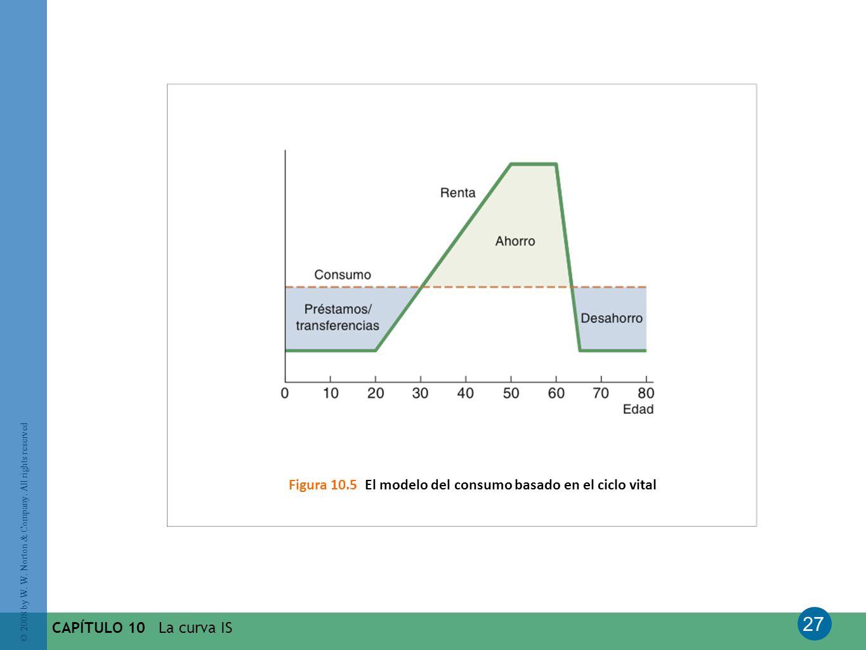 Figura 10.5 El modelo del consumo basado en el ciclo vital