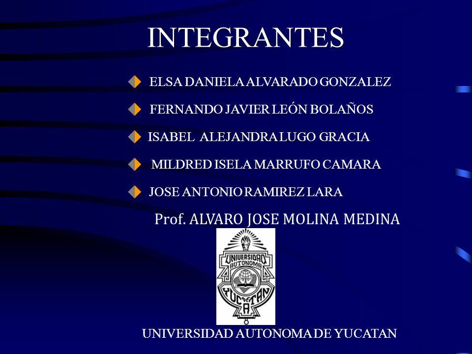 INTEGRANTES Prof. ALVARO JOSE MOLINA MEDINA