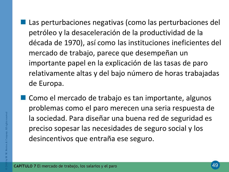 Las perturbaciones negativas (como las perturbaciones del petróleo y la desaceleración de la productividad de la década de 1970), así como las instituciones ineficientes del mercado de trabajo, parece que desempeñan un importante papel en la explicación de las tasas de paro relativamente altas y del bajo número de horas trabajadas de Europa.