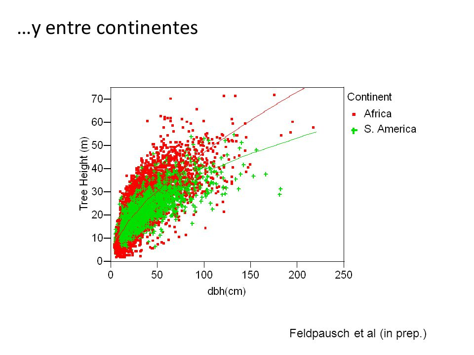 …y entre continentes Feldpausch et al (in prep.)
