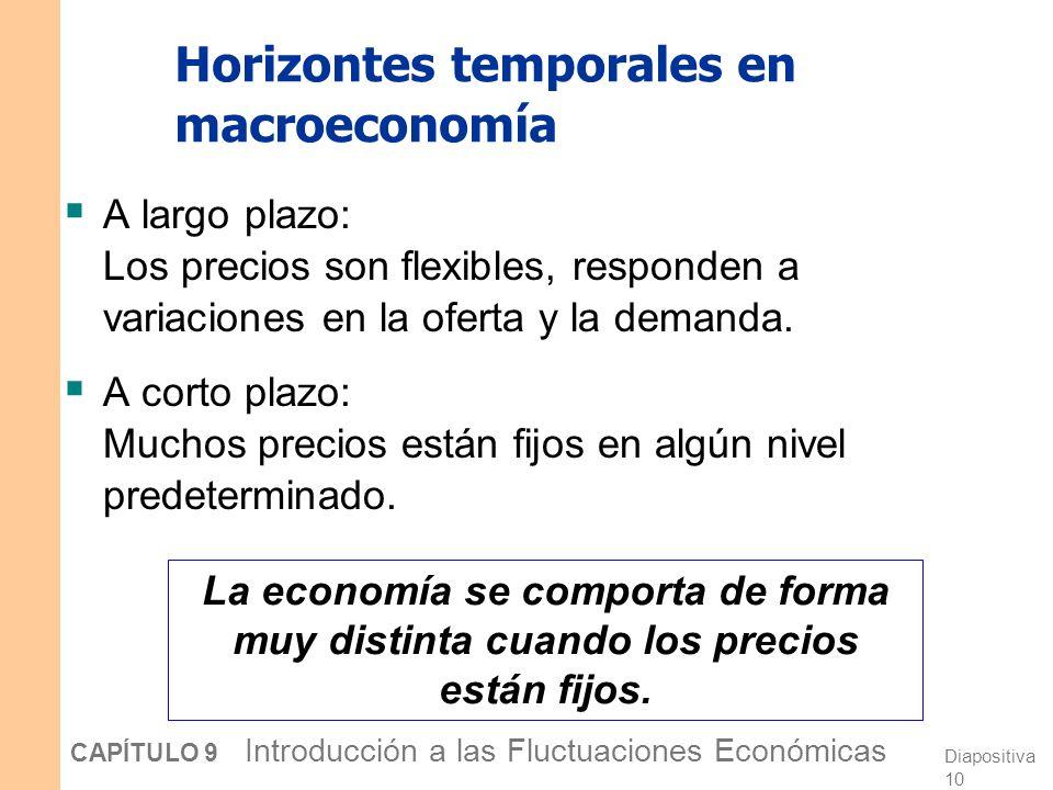 Horizontes temporales en macroeconomía