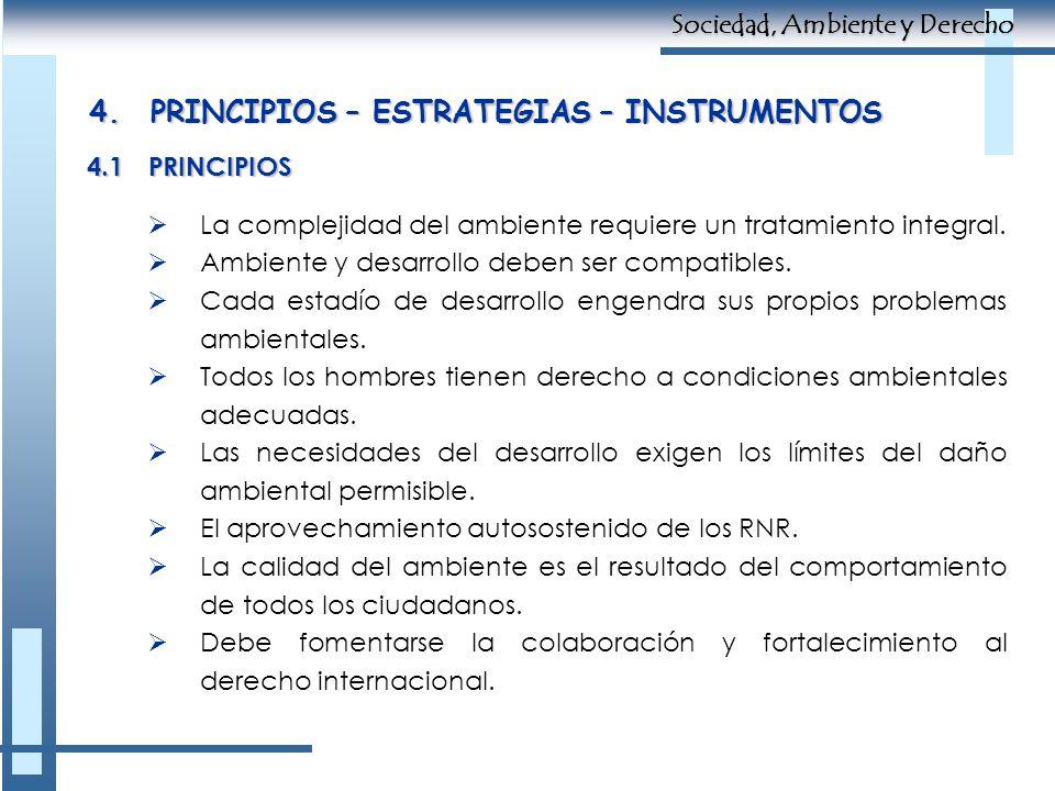 4. PRINCIPIOS – ESTRATEGIAS – INSTRUMENTOS