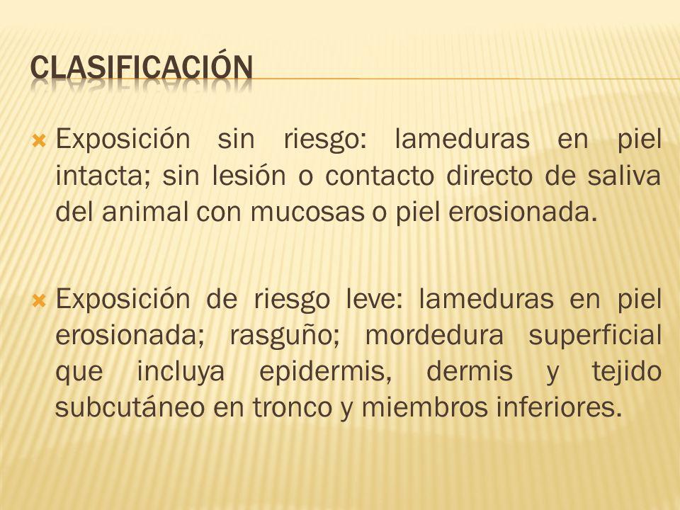 clasificación Exposición sin riesgo: lameduras en piel intacta; sin lesión o contacto directo de saliva del animal con mucosas o piel erosionada.