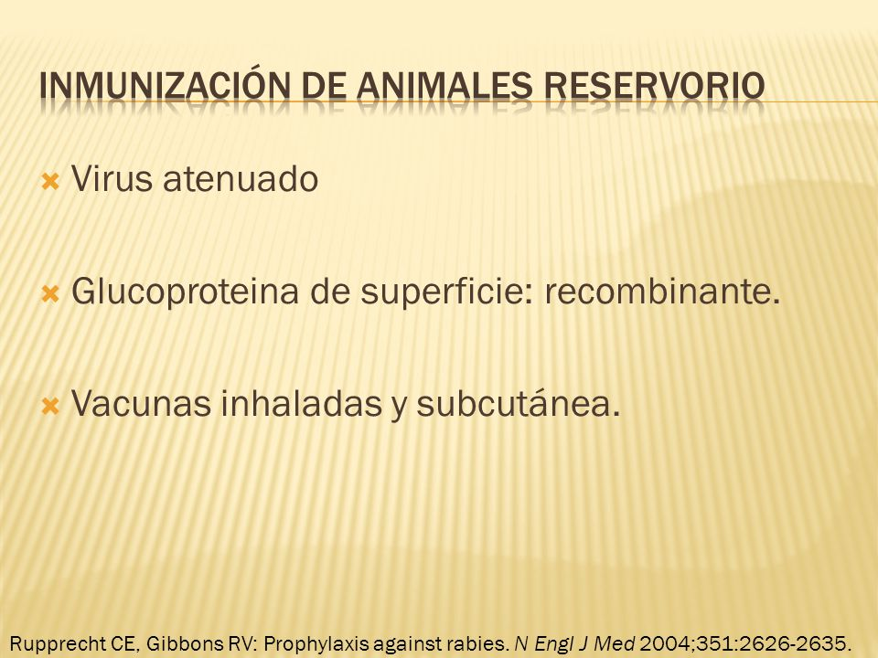 Inmunización de animales reservorio
