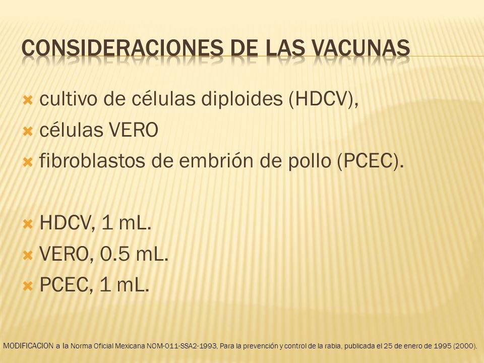 Consideraciones de las vacunas