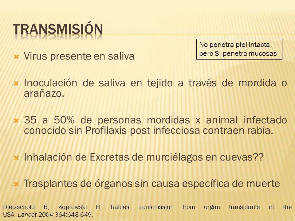 Transmisión Virus presente en saliva